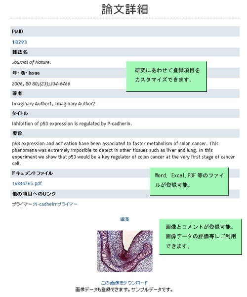 EndNoteとの連携で論文管理も可能